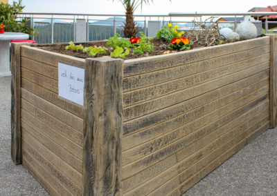 Hochbeete aus Beton